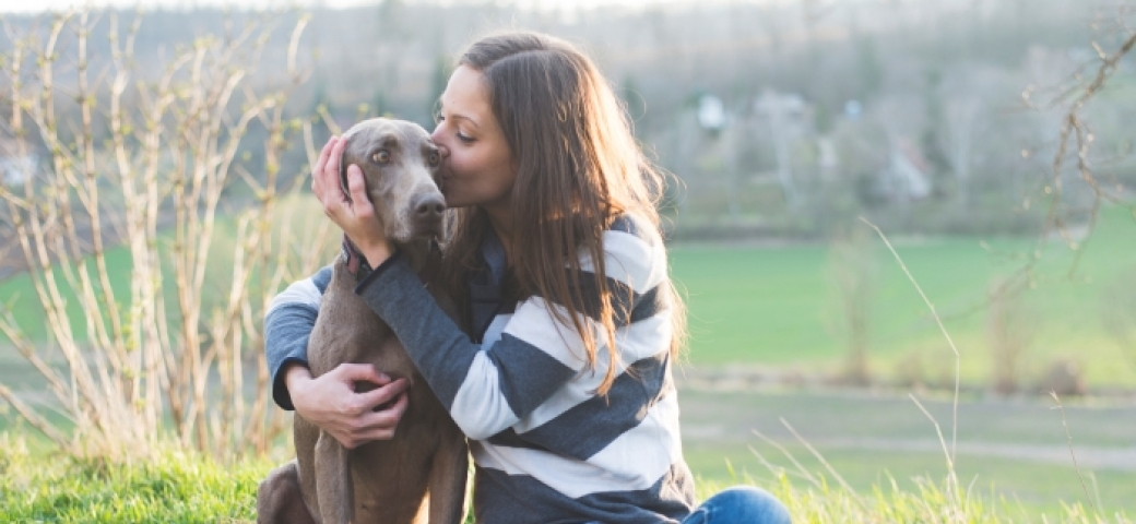 Honoring Our Animal Companions