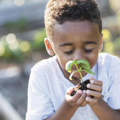 A child with short dark hair and dark skin in a white t shirt is holding a basil plant start up to their face and smelling