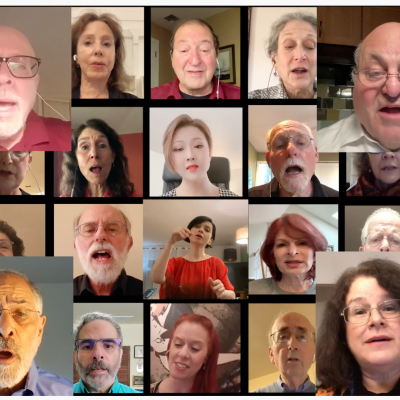 faces of singers on zoom