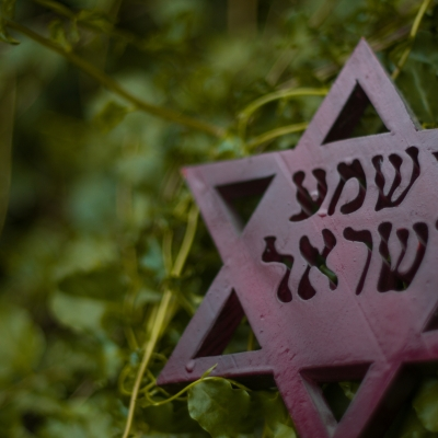 wooden star of david with hebrew words shma yisrael (hear, O Israel) against green background of leaves/stems appearing to be in a forest