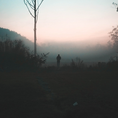 dark misty forest with clearing where person walks far in the distance into misty grayish landscape