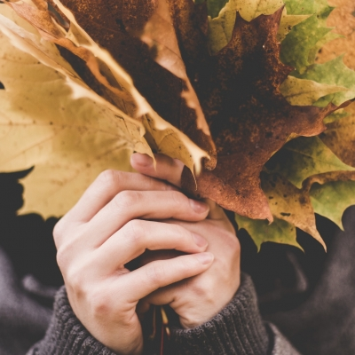 hands holding large yellow leaves, covering a face