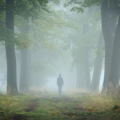 person walking through fog in the forest
