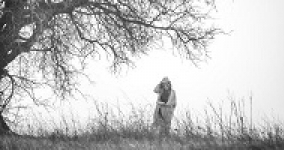 woman walking in a field under a tree