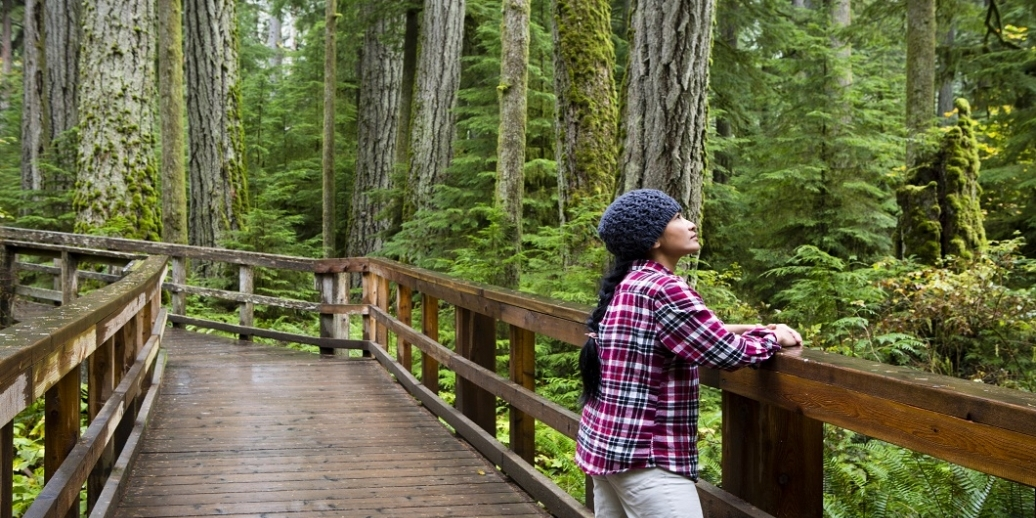 woman on a bridge in the forest looking up at trees